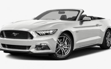 Buchen  Ford Mustang v6