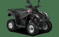 KYMCO Quad Kymco 125 ccm